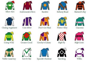 This looks similar to the racing cheat sheet I was given at the tracks in Ireland, which listed the names of horses, jockeys, and had a crude depiction of the riders' colors.