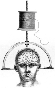 phrenology-and-thread-w-strand-vert-cropped