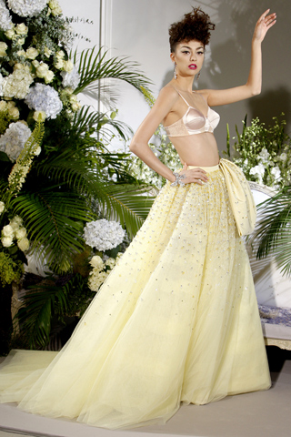 Dior F09 - bra and ballgown skirt